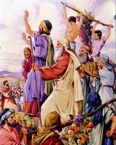 Moses sent twelve spies into Canaan to see what it was like. Ten gave a bad report of the danger, while Joshua and Caleb gave a good report. (Numbers 13).