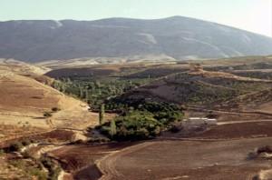 Tirzah Area, near Tel El Para.