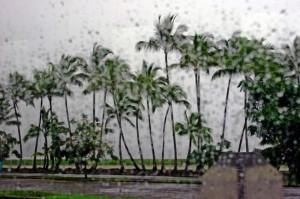 rain_003