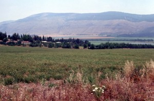 Mount Gilboa, site of Saul's last battle
