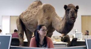 Camel_220214