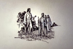 Jesus' disciples followed Him wherever he went, listening to Him and learning from Him. When He returned to heaven, they would lead the building of His church.