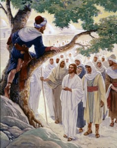 Zacchaeus climbs a sycamore tree to see Jesus. Jesus goes to his house for dinner and Zacchaeus, the dishonest tax collector, becomes an honest man -- Luke 19: 1-10.